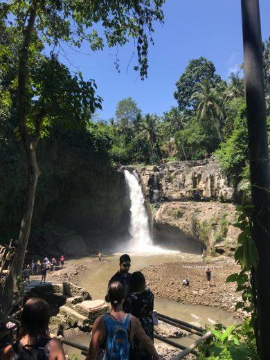 ルアクコーヒー農園やトゥグヌンガンの滝などを周ってサヌールへ。