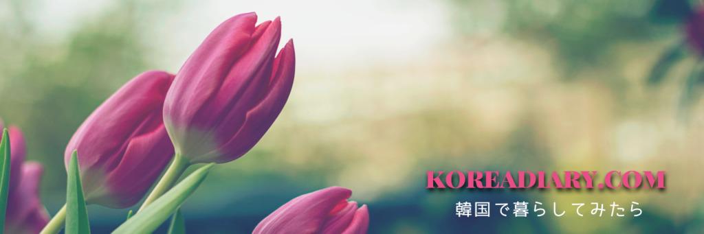 Koreadiary.com::韓国で暮らしてみたら